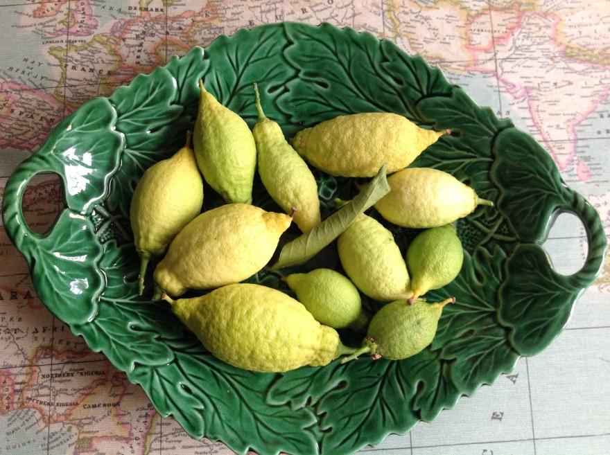 it's peak citrus season in Saffron Walden!